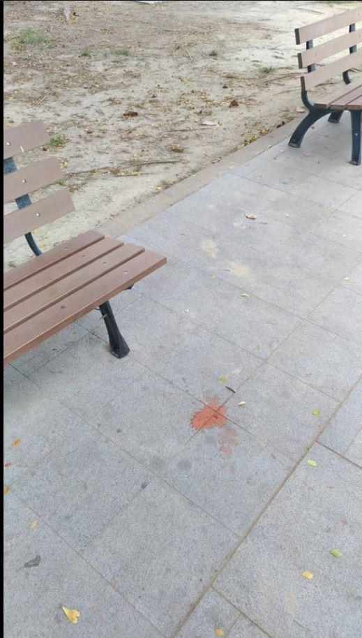 奇美博物館的地板被吐了1攤檳榔汁。(圖擷自《爆料公社》)