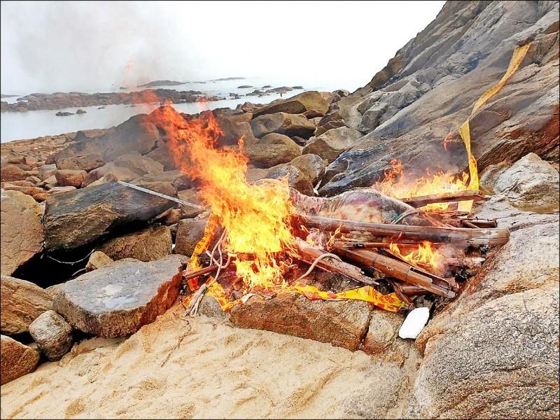 金門縣七日在金湖鎮料羅南石滬公園附近發現一隻漂流岸際豬屍,採樣後立即焚燒掩埋。(金門縣政府提供)