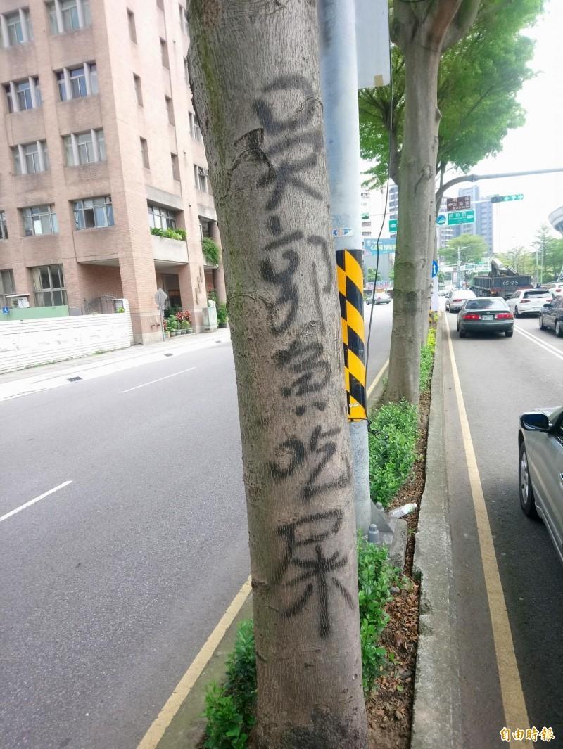 路樹被噴「吳郭魚吃屎」 王浩宇:不滿政治狀況