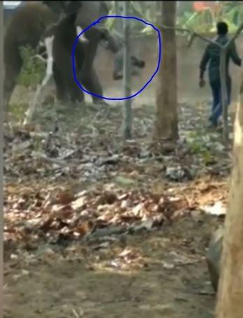 拉賈瑟卡蘭將拜朱重重摔在地上。(圖擷自srinivas Aajtak crimebureau TEJ CRIME EXPRESS NEWS YouTube)