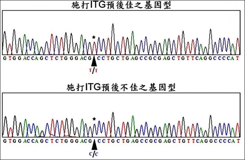 ▲CASP9之基因定序圖,米字號(*)代表CASP9第328個核苷酸之位置。(照片提供/王拔群)