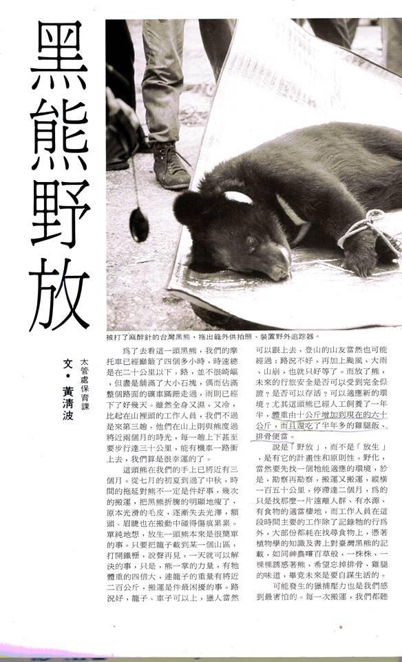 1992年1月25日的「大自然雜誌」34期,太魯閣國家公園保育課黃清波先生撰文「黑熊野放」,詳述當年野放過程及照片。(記者花孟璟翻攝)