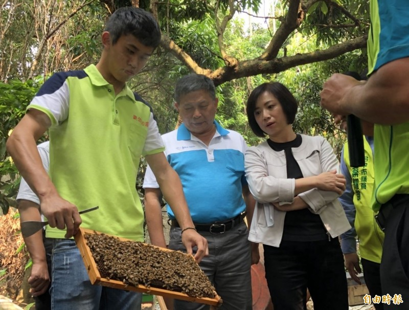 立委何欣純(右1)上月26日邀集農委會官員和市議員李天生(左2)等人到太平蜂場聽取蜂農心聲,農委會已決定針對蜂群損失和餵養砂糖進行補助。(記者陳建志攝)