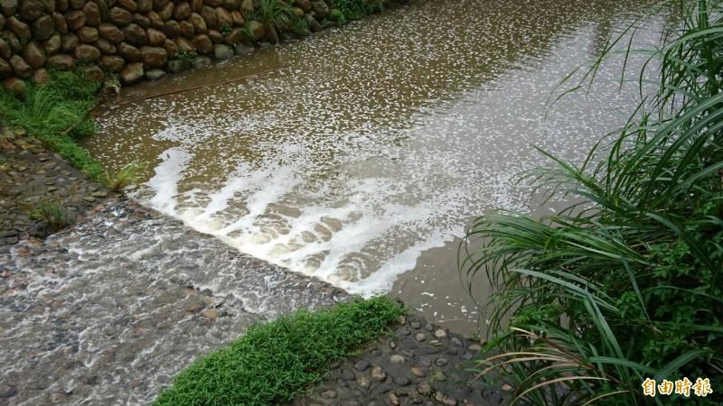 新竹縣關西鎮牛欄河水有刺鼻的消毒藥水氣味,冒白泡沫、呈黃濁色。(記者黃美珠攝)