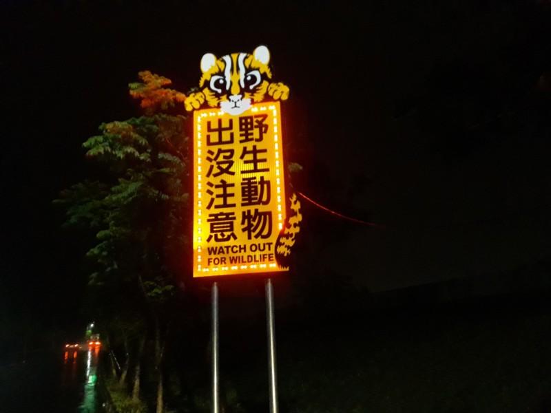 苗栗縣政府在苗29鄉道,架設了2面可愛、醒目的LED警示牌,一隻石虎躲在「野生動物出沒注意」後,呼籲用路人慢行經過。(苗栗縣政府提供)
