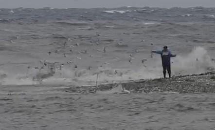有愛鳥人士發現有漁民疑似手持彈弓在花蓮溪出海口「亂槍射鳥」。(民眾提供)