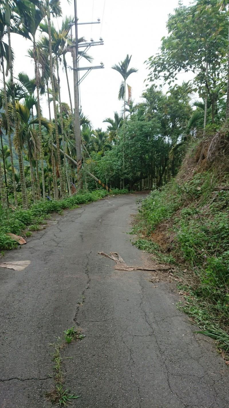 國姓鄉長福村長興林道路狹窄彎曲,意外現場又屬彎道。(民眾提供)