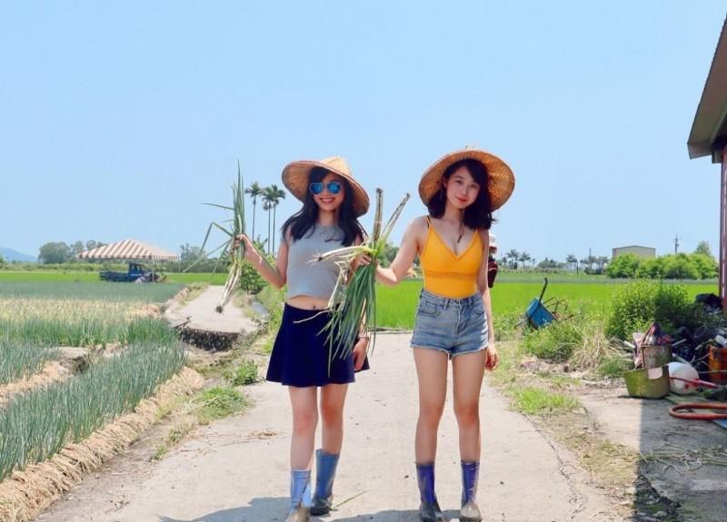 一名香港YouTuber「Miss Pun」搣時潘(圖右),近日到宜蘭體驗拔蔥製作蔥油餅。(圖擷自IG)