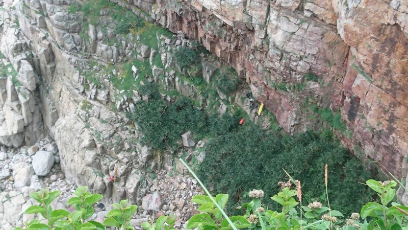 龍洞攀岩場發生2人跌落50米山壁,救難人員架繩救援。(記者吳昇儒翻攝)
