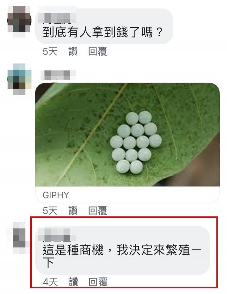 抓荔枝椿象卵塊在彰化鄕間成「全民運動」。(記者顏宏駿翻攝)