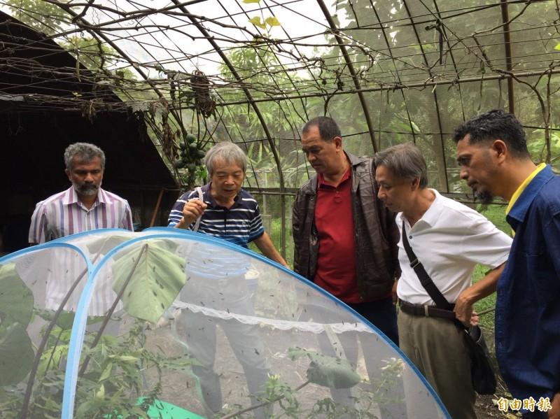 馬來西亞對陳世雄用黑水虻養雞興趣盎然。(記者顏宏駿攝)