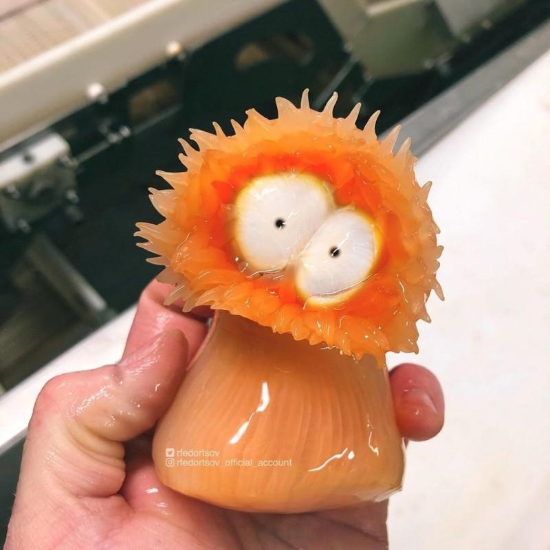 費多爾索夫在IG上分享牠新捕獲的海葵,極像「南方四賤客」中的「阿尼」。(取自費多爾索夫IG)