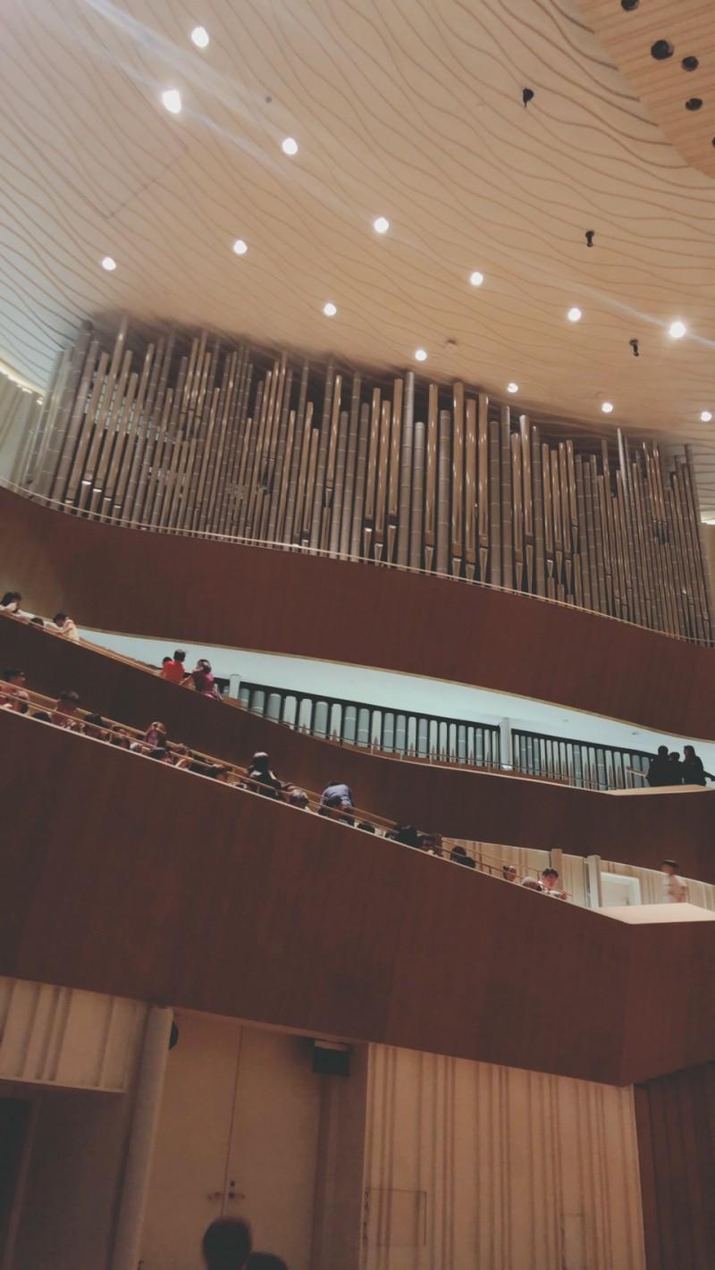 衛武營管風琴是亞洲管風琴之王。 (讀者提供)