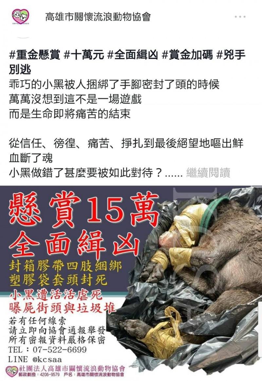 高雄市關懷流浪動物協會今天重金懸賞15萬元緝凶。(記者陳文嬋翻攝)