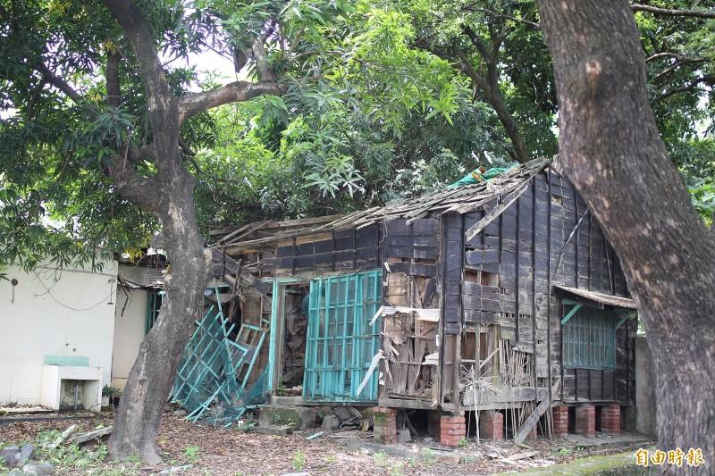 潮州鎮的「郡守宿舍」凸顯過去潮州重要的政經及地理位置,但長年乏人管理,目前屋頂塌陷且雜草叢生。(記者邱芷柔攝)