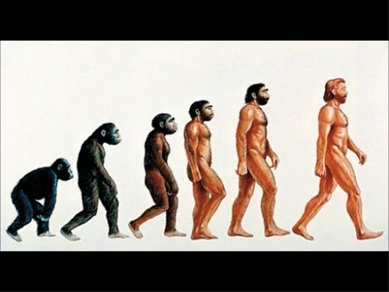 美國研究指出,人類祖先查德沙赫人能站立行走,可能是因為數百萬年前銀河系恆星爆炸,產生強大宇宙射線影響地球所致。(取自網路)