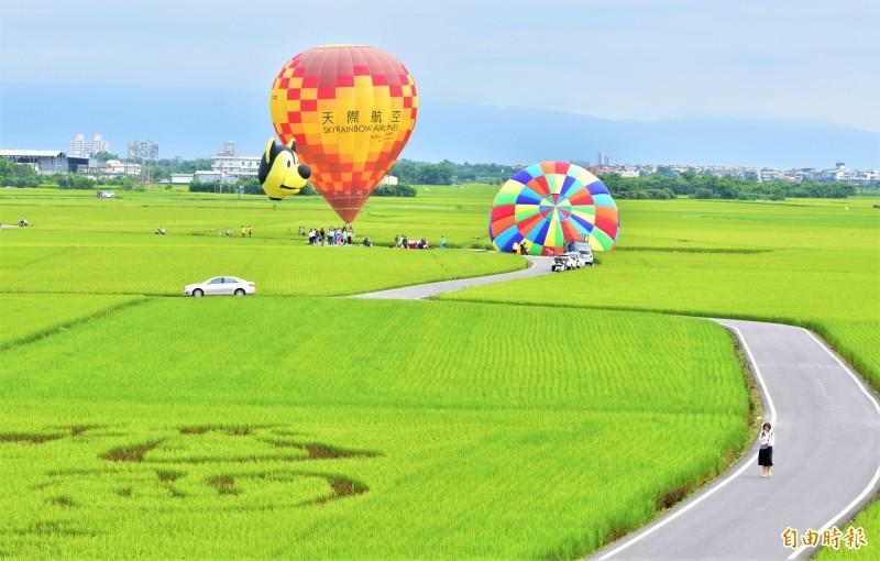 冬山鄉公所在冬山稻間美徑升起熱氣球,從高空俯瞰,腳下稻田美景盡收眼底。(記者張議晨攝)