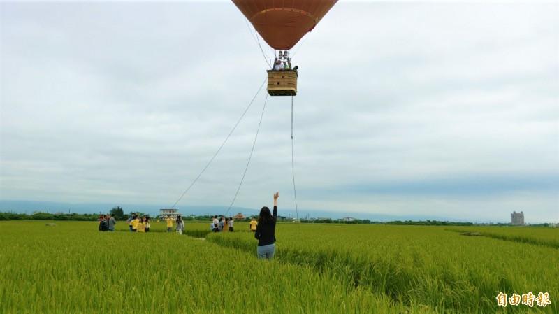 冬山鄉公所在冬山稻間美徑升起熱氣球,從20公尺高空俯瞰,腳下稻田美景盡收眼底。(記者張議晨攝)
