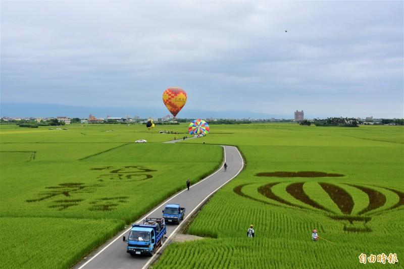 冬山鄉公所在冬山稻間美徑升起熱氣球,從高空俯瞰,腳下稻田美景盡收眼底,搭配彩繪稻田,美的像幅畫。。(記者張議晨攝)