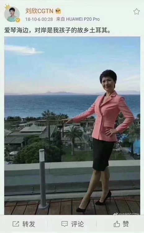 劉欣在2018年10月6日貼出在愛琴海邊的照片,並指出土耳其是她孩子的故鄉。(圖擷取自微博)