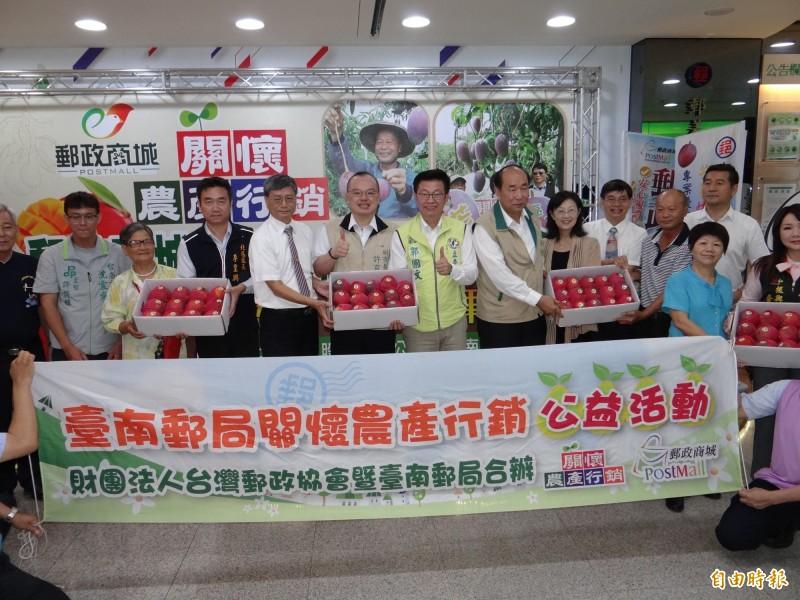 郵政商城網站與各地郵局窗口供民眾訂購外銷日本同等級的台南愛文芒果。(記者王俊忠攝)