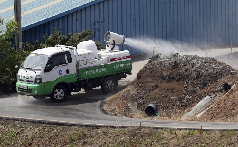 南韓政府預計在10日針對全國6300家養豬場進行統一消毒,並檢測是否有疑似豬瘟感染的情況。(美聯社)