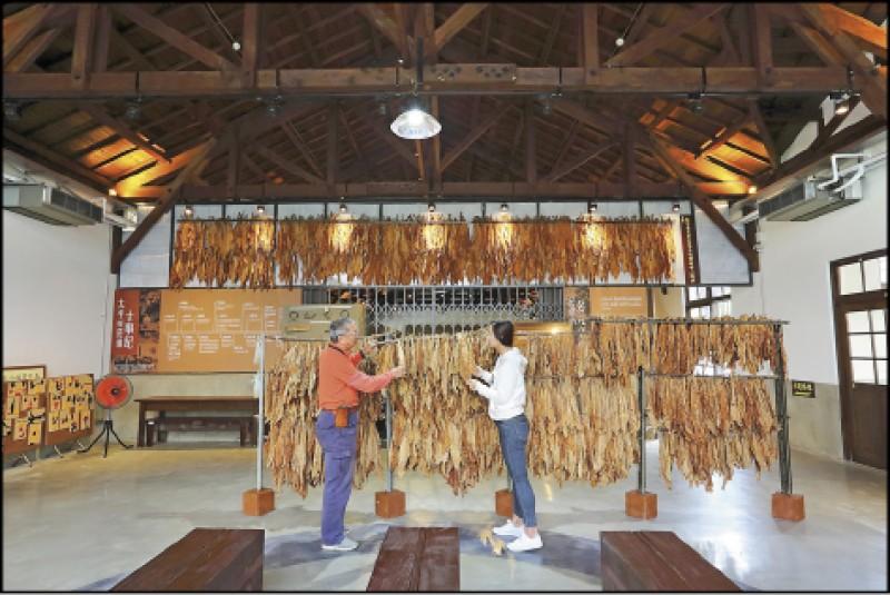 太平買菸場讓遊客認識台灣的菸葉栽種歷史,來這裡還可實際摸摸看、聞聞看菸葉。(記者李惠洲/攝影)