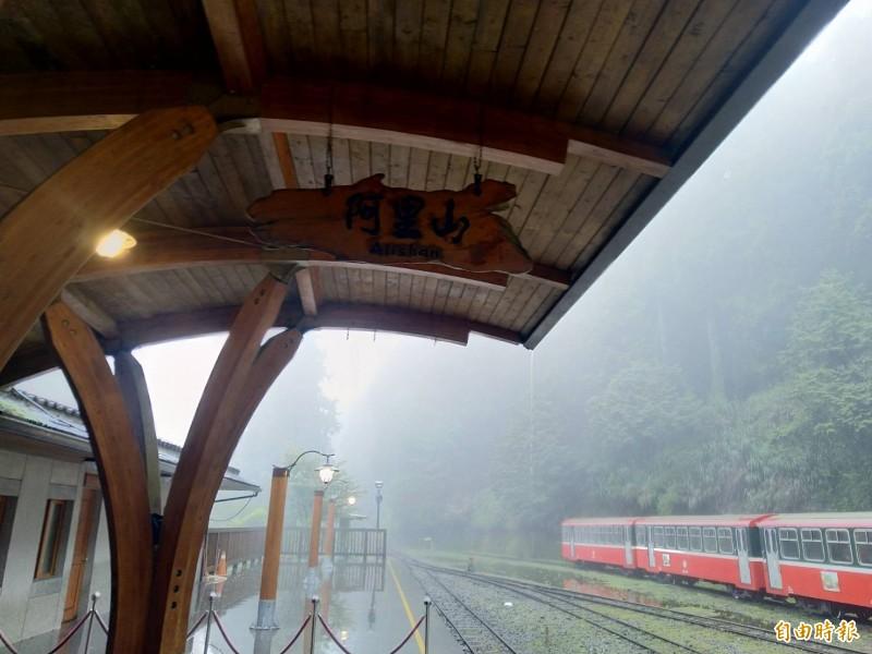 阿里山今日累積雨量達224毫米,林鐵祝山線明停駛