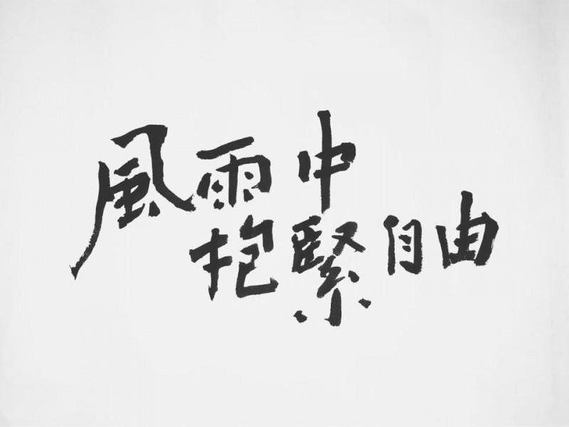 台灣新銳藝術家「6五3」聲援反送中作品。(擷取自6五3臉書粉絲專頁)
