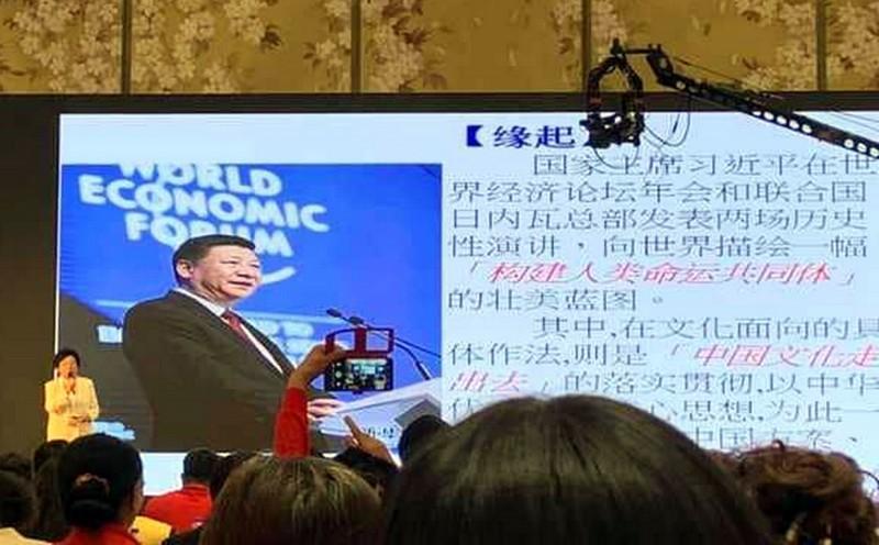 綠營批評,台中市長盧秀燕日前才喊出反對一國兩制,沈智慧(見圖)、李中等於是打臉盧秀燕。(翻攝自王義川臉書)