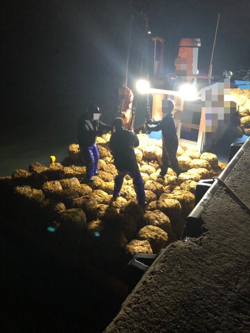 金門查緝隊發現載運至水頭港的帶殼牡蠣。(金門查緝隊提供)