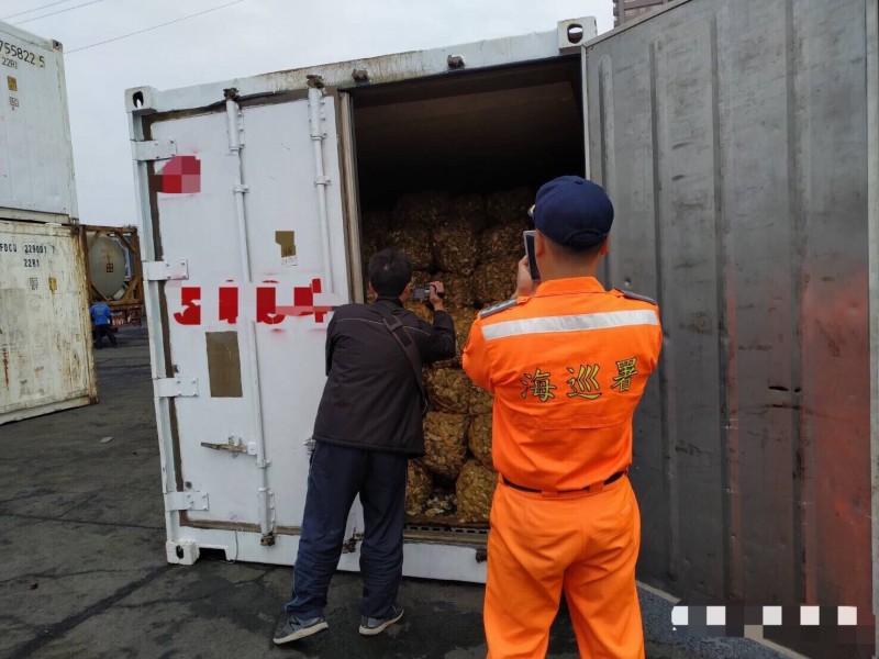 專案小組在高雄港開櫃對帶殼中國牡蠣進行蒐證。(金門查緝隊提供)