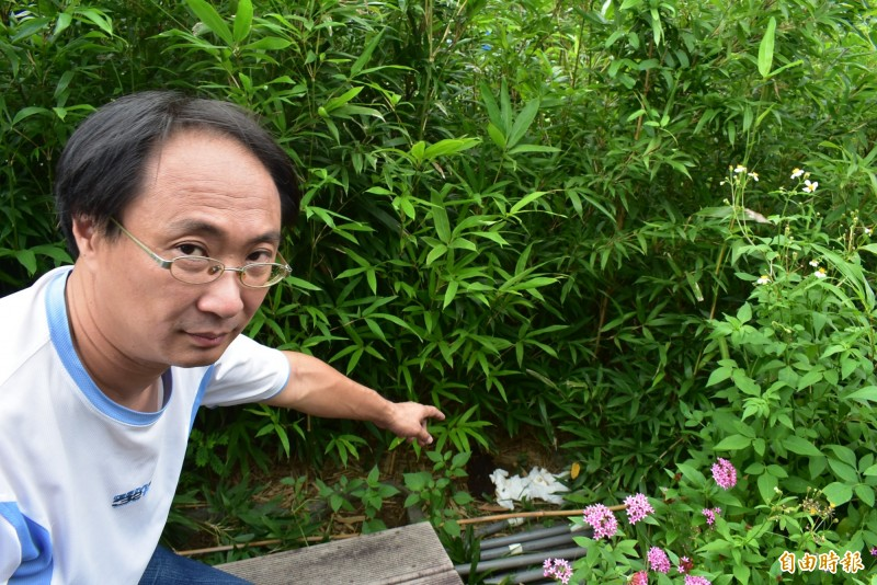 這陀屎距離惠來遺址展示區僅10公尺,理事長陳家彥看得很傻眼。(記者張瑞楨攝)
