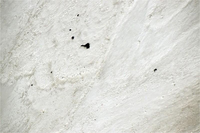喜馬拉雅山脈印度第二高峰楠達德維山東峰(Nanda Devi East),有8名登山家遇上雪崩喪命,當局已尋回7人遺體。圖為救援直升機鳥瞰雪崩處散落一地的登山設備與遺體。(法新社)