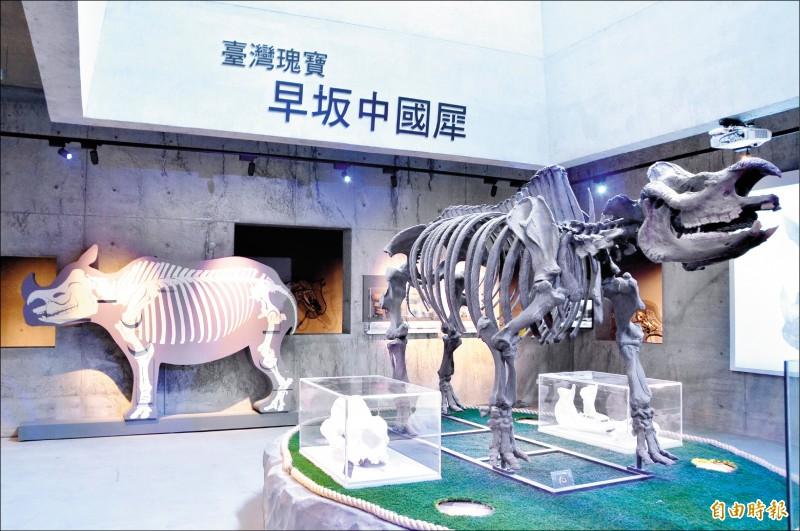 左鎮化石園區推出夏日犀遊記,優惠行銷。 (記者吳俊鋒攝)