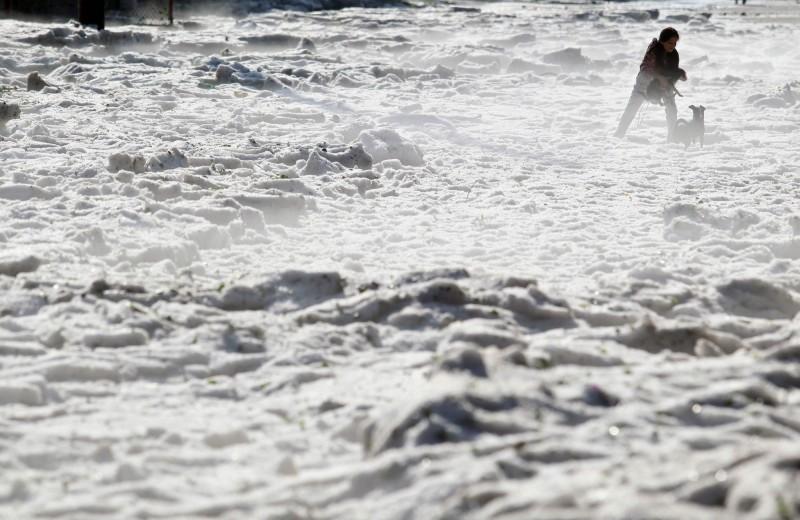 這不是南極,而是氣溫超過攝氏30度的墨西哥。(法新社)