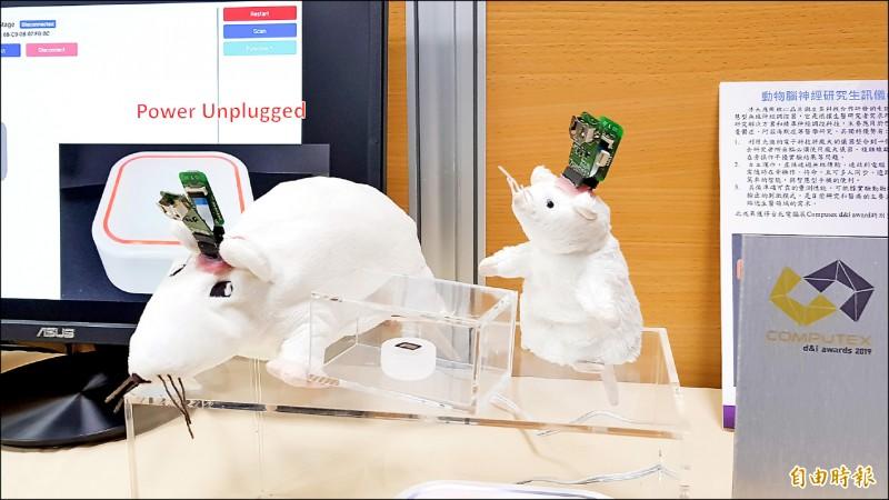 清華大學電子工程研究所教授陳新(右)團隊,開發出可應用於帕金森氏症、失智症和憂鬱症等神經醫學研究的微型無線晶片。(記者簡惠茹攝)