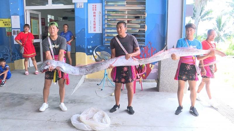 卑南鄉莿桐部落在海祭時,首度捕撈到地震魚。(記者王秀亭翻攝)