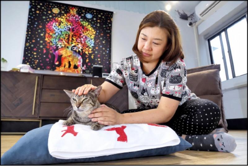 透過特定的撫摸方式來替貓主子按摩,不但能替牠們紓壓放鬆,還可拉近感情喔!(記者陳宇睿/攝影)