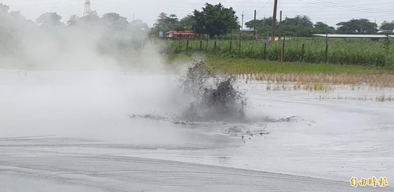 萬丹泥火山噴發,地點與去年農地相鄰。(記者葉永騫攝)