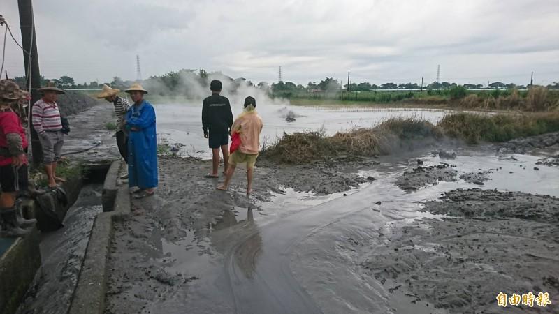 萬丹泥火山噴發,農民頭痛萬分。(記者葉永騫攝)