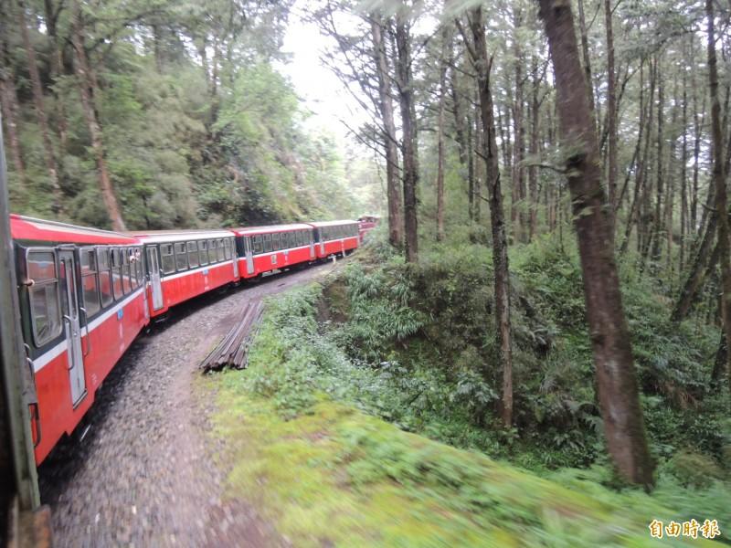 圖為林鐵小火車在高山森林奔馳而過。(記者陳璟民攝)
