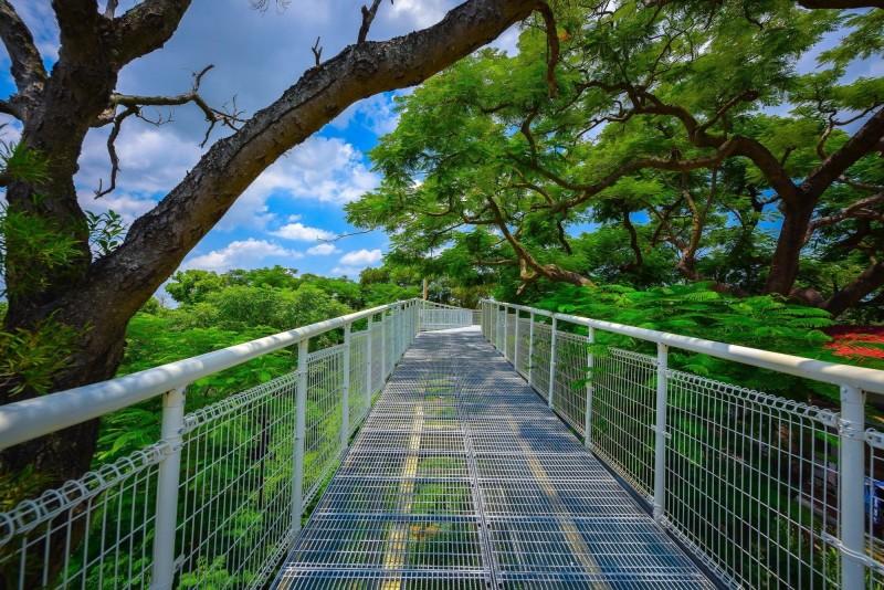 參加聯誼的未婚男女都將漫步走過「幸福鵲橋」(天空步道),相當浪漫。(記者湯世名翻攝)