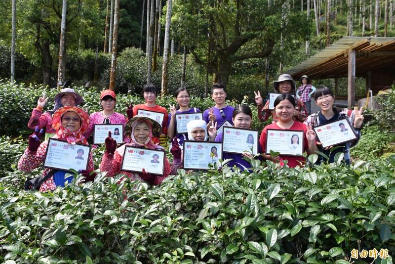 古坑桂林女茶隊成員努力取得製茶士證照。(記者黃淑莉攝)