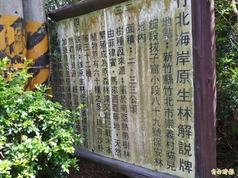 政府曾在竹北海岸原生林規劃步道及解說牌;可惜後續缺乏維護,解說牌形同虛設。(記者廖雪茹攝)