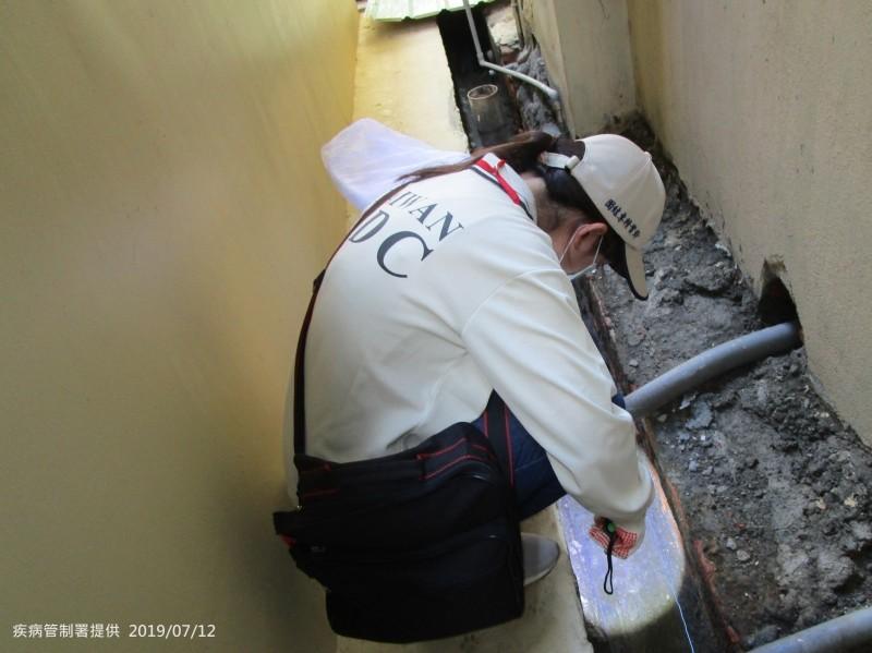 疾管署防疫人員於高雄市三民區安吉里執行孳生源查核。(疾管署提供)