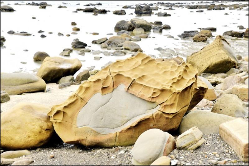 金包銀:金銀雙色石頭,是因不同時期的地質沉積而成,最早為灰色岩石,後再被土色的沙石沉積包覆,因風化速度不同,而有如剝皮狀的景觀,當地人將其取名為金包銀。(記者許麗娟/攝影)