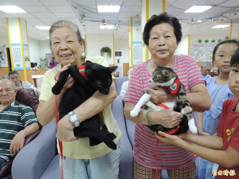 台北榮總蘇澳分院日照中心長者,與「喵星人」相見歡。(記者江志雄攝)