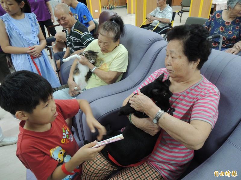 老人家開心抱著「喵星人」,雙方親切互動。(記者江志雄攝)