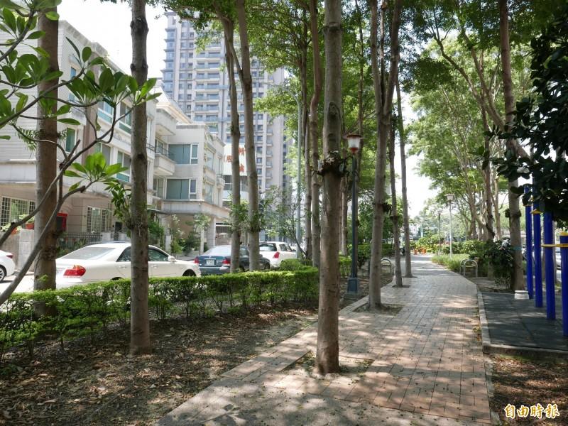 梅川園道4顆大樹竟種在人行道上,顯得突兀。(記者蔡淑媛攝)